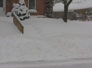 snowfall Feb 2013 004